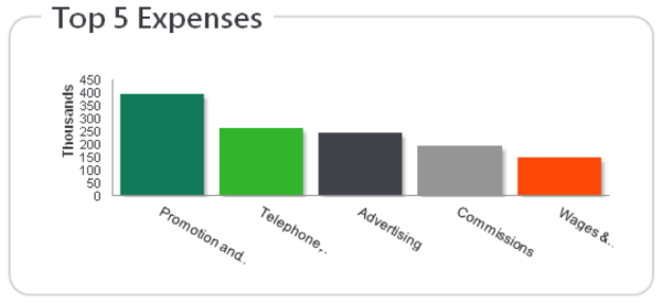 Top 5 Expenses Dashboard Sage 300 ERP